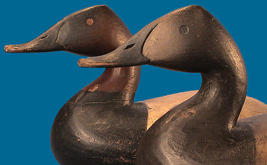 Superb Graham style pair of hollow Canvasbacks by Cameron McIntyre
