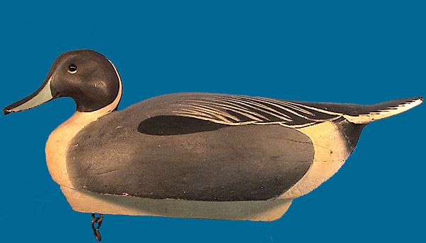 Nice Ward Brothers Pintail drake