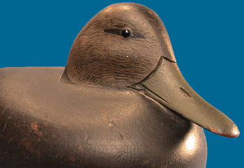 Heisler Black Duck front right side detail